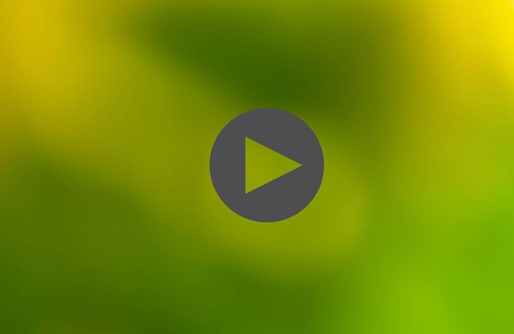 فیلم آموزش تری دی مکس – جلسه هفدهم